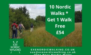 Ten Walks Deal