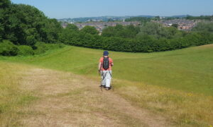 Ludwell Valley Park walks
